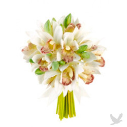 Mini orchid bouquet with green and white orchids.
