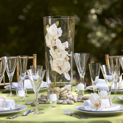 Centerpiece set with tropical orchid theme.