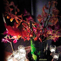 Orchids in a vase surrounded by candles.