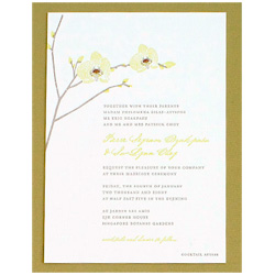 Hello Lucky wedding invitation with a green orchid.