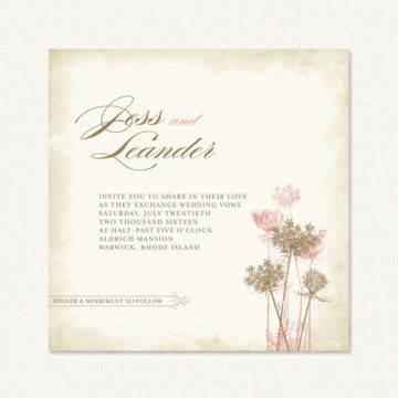 Rustic wedding invite with queen anne flowers on a textured tone background.