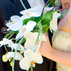Cascading Orchid Wedding Bouquet with White Phalaenopsis Orchids