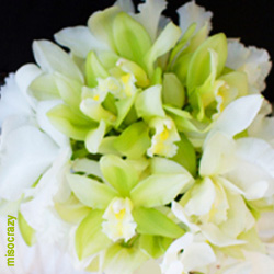 Orchid Wedding Bouquet with Green Cymbidium Orchids