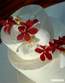 3 Tier cake with dendrobium and phalaenopsis orchids