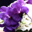 purple-wedding-bouquets-thb
